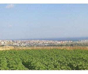 Tekirdağ Süleymanpaşa Yağcı'da deniz ve şehir manzaralı arazi
