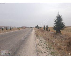 kargalı mahallesinde köy asfaltına cepheli arazi satılıktır.